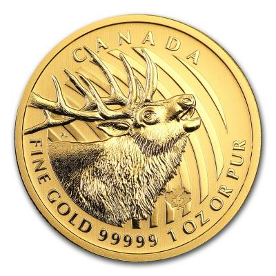 1 oz Gold Elk